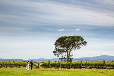 David & Kindy's Wedding Photography | Stones of the Yarra Valley